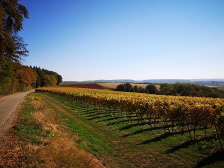 "Begriff des Monats Oktober ""Złota jesień"""